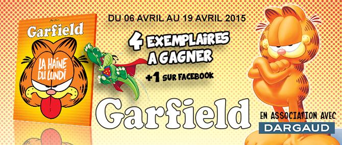 illustration_LaRibambulle_garfield