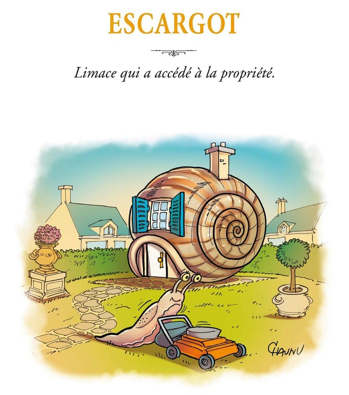 laurent-baffie-chaunu-dictionnaire-illustrc3a9-kero-jungle-escargot