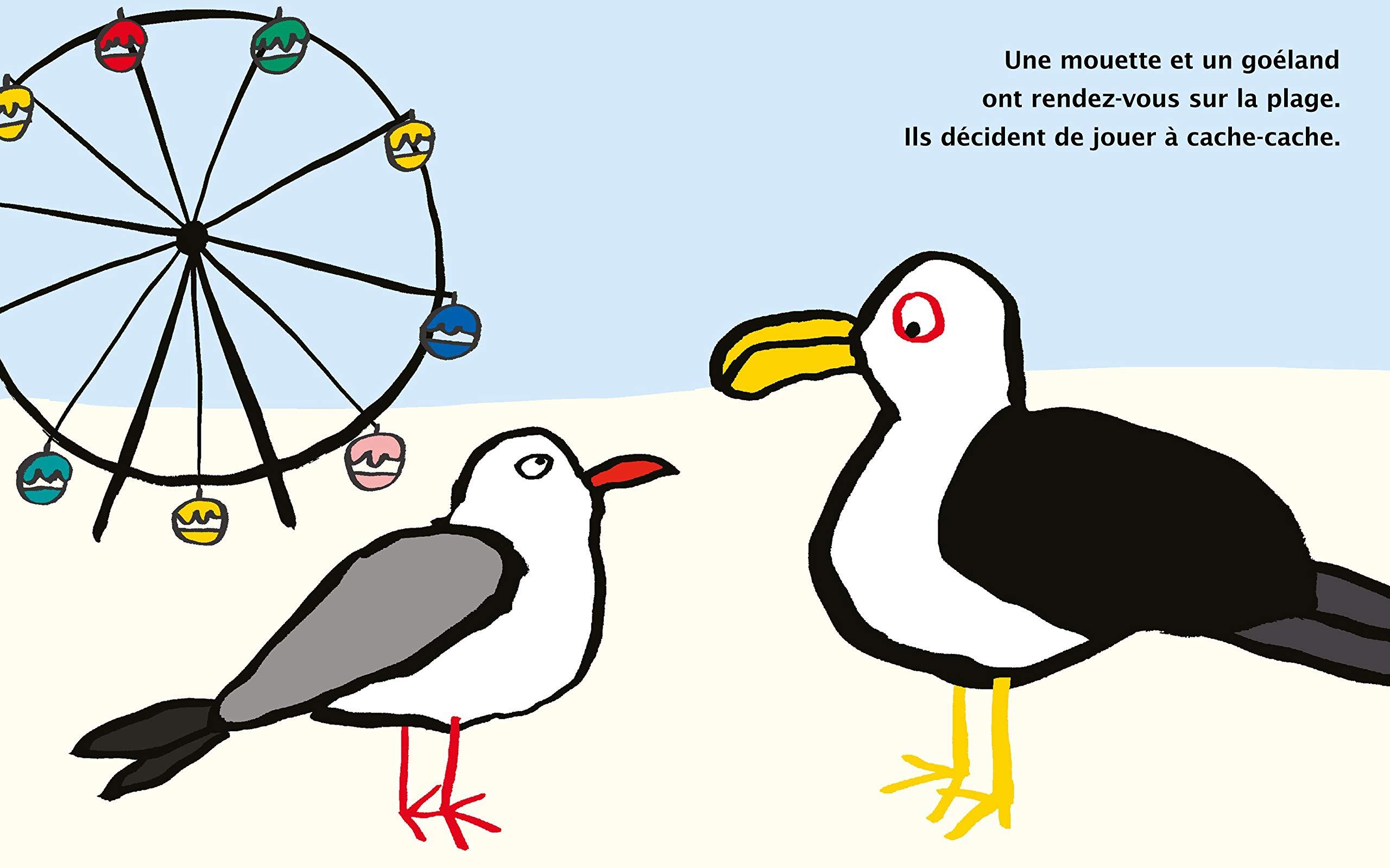 mouette-et-goeland-1